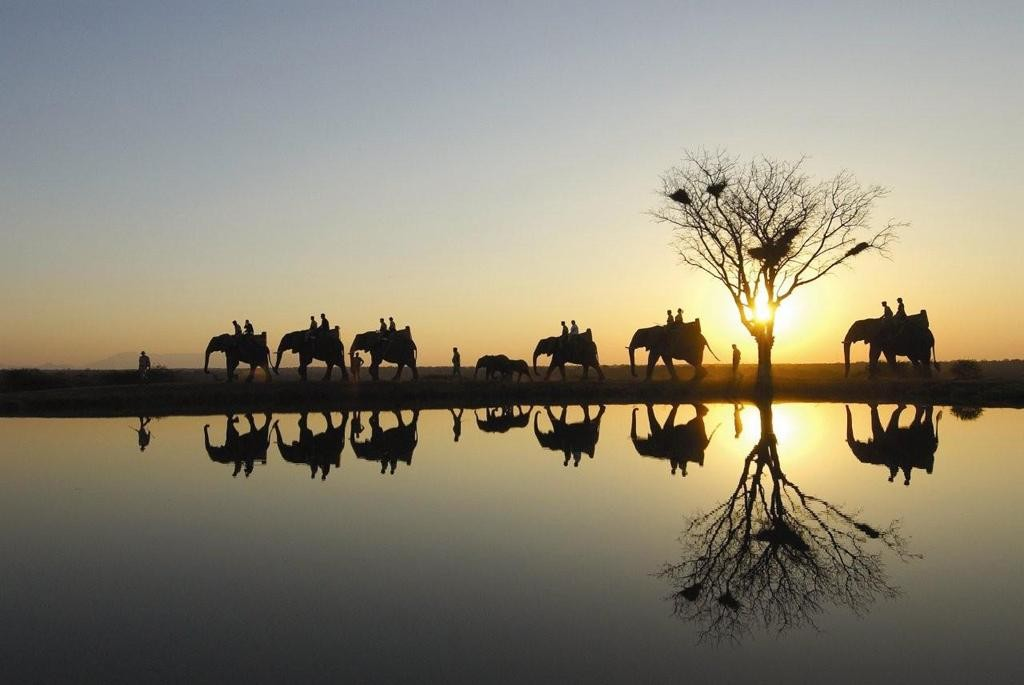 Riding Elephants during a sunset